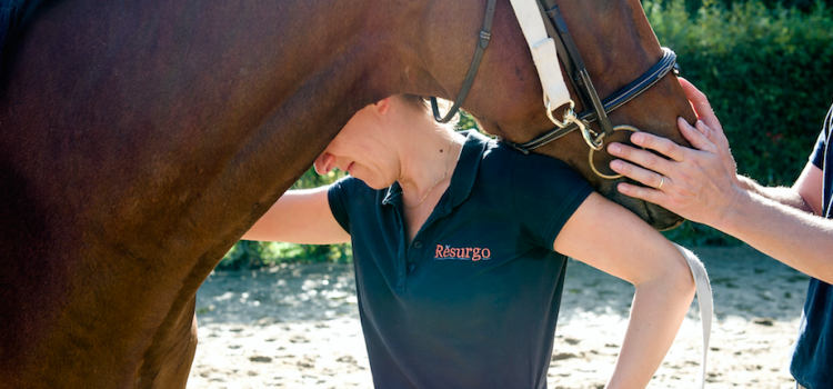 Horse Coaching by Rĕsurgo